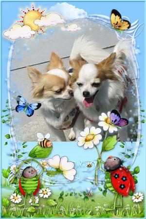 Iphone_201202231919061